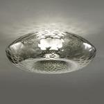 Cicla IP45 Ceiling Light Fixture - Smoke Green / Iron Gray