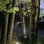 IL9 FlexScape LED Inground Luminaire -