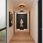 Casia Ceiling Light -