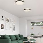 Essex Ceiling Light Fixture -