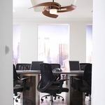 Avaston Ceiling Fan by Fanimation