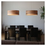 Funk 60/20 Pendant by Lightology Collection