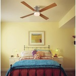 Inlet Ceiling Fan by Fanimation