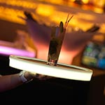 Tron Lighted Tray -  / White