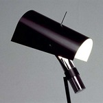 Claritas Floor Lamp - Matte Black /