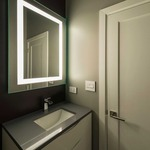 Plaza Small Dimmable Fluorescent Mirror - Mirror / Frosted
