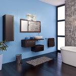 Madrona Bathroom Vanity Light -