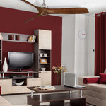 Aviation Ceiling Fan with Light -