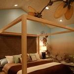 Caruso Ceiling Fan by Fanimation