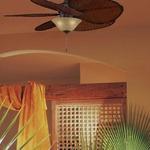 Islander FP320 Ceiling Fan by Fanimation