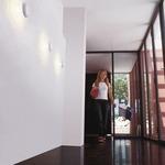Funnel Halogen Wall / Ceiling Light -  /