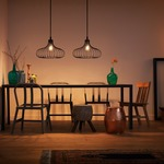 Gabbia Pendant by Philips Consumer Lighting