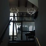 Heracleum II LED Suspension -  /