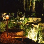 Fern Lite Halogen Inground Light - Copper  /