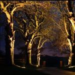Driveway Lite 6W 15Deg Recessed Light by Hunza Lighting