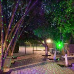 Indoor/Outdoor Laser Light by Sparkle Magic Lighting