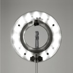 Link Table Lamp - Silver /