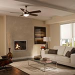 Discus Ceiling Fan with Light -  /