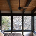 Torsion Ceiling Fan No Light -  /