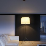 Ola Floor Lamp by Lightology Collection