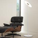 Circa Floor Lamp -  /