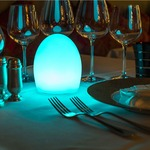 Point Outdoor Indoor LED Lamp -  / White