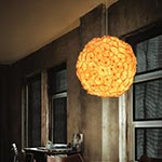 Poppy Hanging Lamp by Hive
