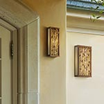 Serengeti Outdoor Wall Sconce by Troy Lighting