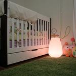 Vessel LED Lamp -