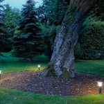 Alpa Mushroom Outdoor Bollard by SLV Lighting