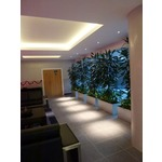 Soft Strip 2.4W 12V Warm White by Edge Lighting