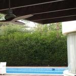 Propeller Graphite Ceiling Fan -