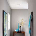 Tenur Square Ceiling Light Fixture by LBL Lighting
