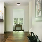 Trumbull Ceiling Light Fixture -  /