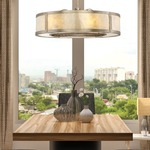 Vireo Air Ionizing Ceiling Fan D'lier with Light -