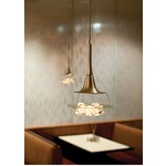 Vision Pendant by LBL Lighting