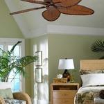 Windpointe Ceiling Fan with Light by Fanimation