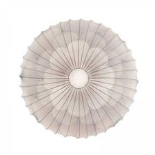 Muse Round Wall or Ceiling Light