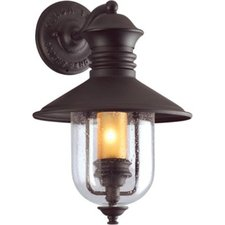 Old Town Outdoor Dark Sky Wall Sconce