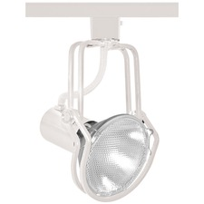 T437 Wireform PAR38 Trac Master Line Voltage Lamp Holder