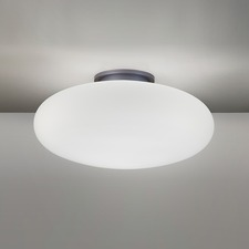 5402 Ceiling Light Fixture