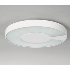 Zerotonda Ceiling Light