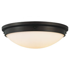 Boulevard 15 inch Ceiling Light Fixture