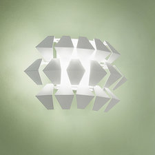 Agave Wall Sconce