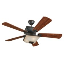 Town Ceiling Fan with Light