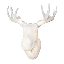 Moose Indoor/Outdoor Wall Lamp