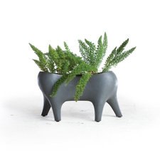Animal Farm Planter