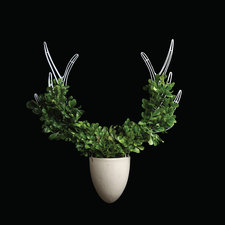 Menagerie Elk Wall Planter