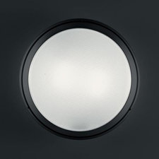 Pantarei 390 LED Outdoor Wall/Ceiling Light