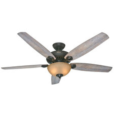 Valerian Ceiling Fan with Light
